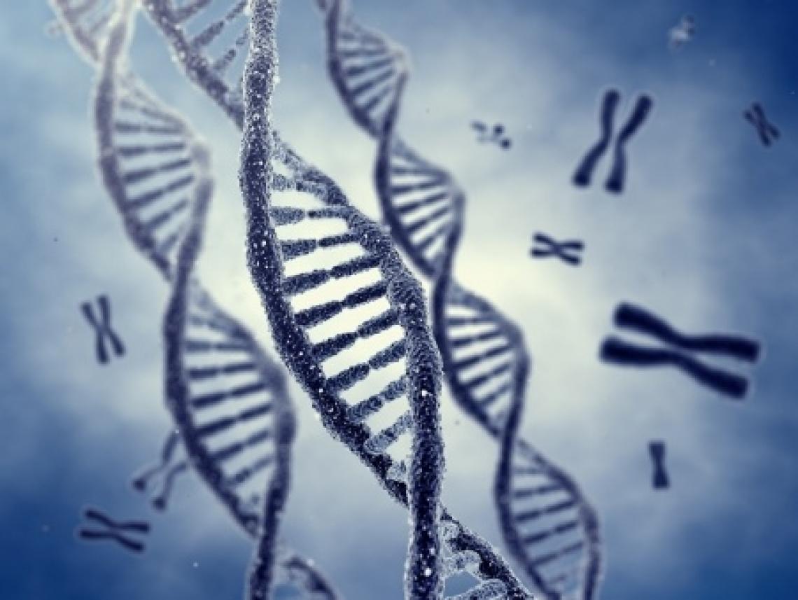 Genética y TDAH